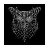 Black Owl Mesh Art by Lisa Kroll