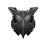 Black Owl Head Mesh Prints by Lisa Kroll
