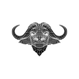 Black and White Buffalo Mesh Prints by Lisa Kroll