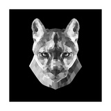 Mountain Lion Head Posters by Lisa Kroll