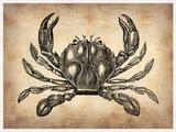 Vintage Crab Plastic Sign by  NaxArt