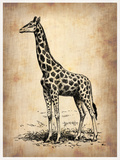 Vintage Giraffe Plastic Sign by  NaxArt