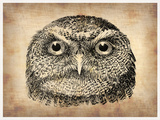 Vintage Owl Face Plastic Sign by  NaxArt