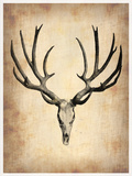 Vintage Deer Scull Plastic Sign by  NaxArt