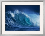 Hang Ten Framed Photographic Print by Art Wolfe