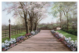 Country Lane Print by Diane Romanello