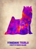 Yorkshire Terrier Poster Plastic Sign by  NaxArt