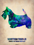 Scottish Terrier Poster Plastic Sign by  NaxArt