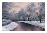 Winter Sunlight Art by Diane Romanello