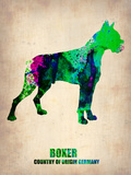 Boxer Poster Poster Plastic Sign by  NaxArt