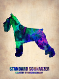 Standard Schnauzer Poster Plastic Sign by  NaxArt