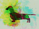 Dachshund Watercolor Plastic Sign by  NaxArt