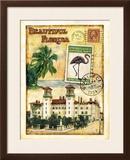 Florida Prints by Tina Chaden