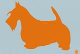 Scottish Terrier Orange Plastic Sign by  NaxArt