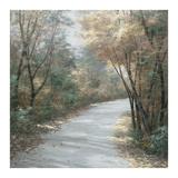 Sfumature d'autunno Poster di Diane Romanello