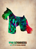 Miniature Schnauzer Poster Plastic Sign by  NaxArt