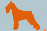 Standard Schnauzer Orange Plastic Sign by  NaxArt