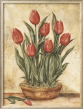 Potted Tulips Posters by Tina Chaden