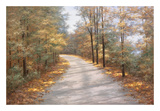Walking in Fall Posters by Diane Romanello