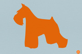 Miniature Schnauzer Orange Plastic Sign by  NaxArt
