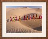 Desert Walk Framed Photographic Print by Art Wolfe