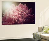 Heartbreaker Premium Wall Mural by Philippe Sainte-Laudy