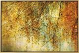 Twelfth Night Framed Canvas Print by Anne Staub