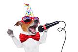 Happy Birthday Dog Singing Photographic Print by Javier Brosch