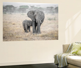 Serengeti Breakfast Time Wall Mural by Marco Carmassi