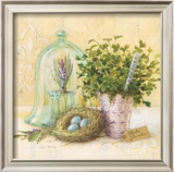 Cook's Garden Print by Angela Staehling