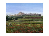 Mdina Poppies Malta 1 Posters by Richard Harpum