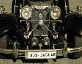 1939 Jaguar Giclee Print by  Graffi*tee Studios