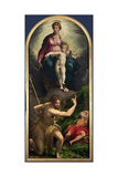 Madonna and Child with St. John and St. Jerome, 1526-27 Giclee Print by  Parmigianino
