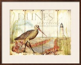 Dunes Shorebird Art by Mary Escobedo