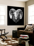 Ram Head Wall Mural by Lisa Kroll
