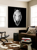Horse Head Wall Mural by Lisa Kroll