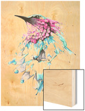 Hummingbird Wood Print by Alexis Marcou