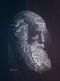 Darwin Typography Quotes Prints by  Lynx Art Collection