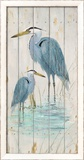 Blue Heron Duo Poster by Arnie Fisk