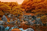 Fall Colors at the Pond of the Ninomaru Garden Photographic Print by Kike Calvo