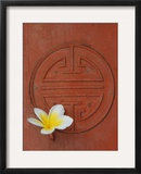 Long Life Symbol and Lotus Flower Framed Photographic Print by Sebastien Desarmaux