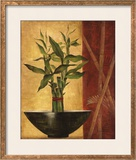 Lucky Bamboo II Prints by Eugene Tava