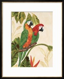 Tropical Green Pair Prints by Colleen Sarah