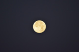 Portrait of the Full Moon Photographic Print by Jonathan Kingston