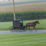 Horse Pulls a Buggy Along on a Country Road in Lancaster County, Pennsylvania Photographic Print by Richard Nowitz