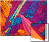 A Photomicrograph, a Picture Taken Through a Microscope, of Benzoic Acid Prints by Cesare Naldi