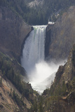 Lower Yellowstone Falls Cascades from Steep Cliffs Photographic Print by Stacy Gold