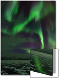 A Colorful Aurora Display over a Frozen Lake Posters av Babak Tafreshi