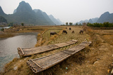 Guilin, China: Bamboo Boats Provide Transportation in This Remote Village Photographic Print by Ben Horton
