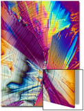 A Photomicrograph, a Picture Taken Through a Microscope, of Dextrose Prints by Cesare Naldi
